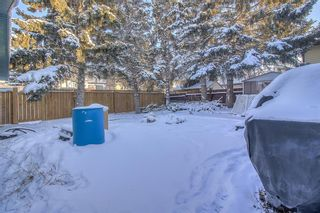 Photo 34: 4 Abergale Way NE in Calgary: Abbeydale Detached for sale : MLS®# A1068236