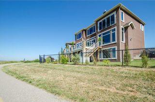 Photo 45: 70 CRANRIDGE Heights SE in Calgary: Cranston House for sale : MLS®# C4125754