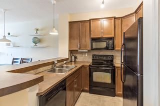 Photo 9: 211 37 Prestwick Drive SE in Calgary: McKenzie Towne Apartment for sale : MLS®# A1055114
