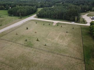 Photo 7: 1A 51310 RGE RD 261: Rural Parkland County Rural Land/Vacant Lot for sale : MLS®# E4251082