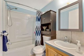 Photo 22: 249 Erin Woods Circle SE in Calgary: Erin Woods Detached for sale : MLS®# A1147067