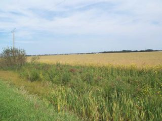 Photo 3: TWP 551 RR 234: Rural Sturgeon County Rural Land/Vacant Lot for sale : MLS®# E4245373