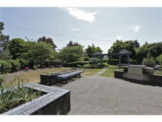 """Photo 19: 207 20277 53 Avenue in Langley: Langley City Condo for sale in """"Metro II"""" : MLS®# F1446990"""