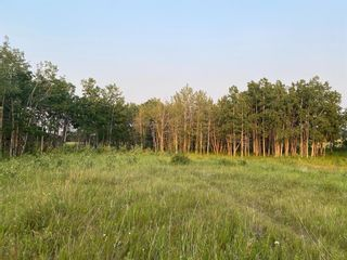 Photo 6: Lot 4 Range Road 33 in Rural Rocky View County: Rural Rocky View MD Residential Land for sale : MLS®# A1134552
