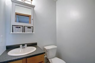 Photo 20: 317 Big Springs Court SE: Airdrie Detached for sale : MLS®# A1152002