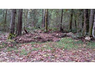Photo 4: 2220 MAPLE Place: Gambier Island Land for sale (Sunshine Coast)  : MLS®# V1091323