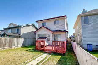 Photo 48: 145 Taravista Crescent NE in Calgary: Taradale Detached for sale : MLS®# A1125771