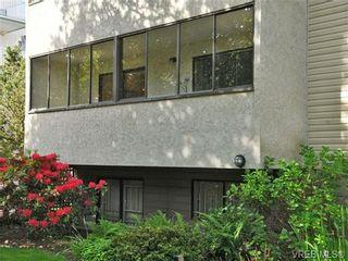 Photo 18: 101 2610 Graham St in VICTORIA: Vi Hillside Condo for sale (Victoria)  : MLS®# 739028