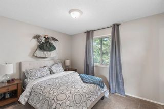 Photo 20: 296 Mt. Brewster Circle SE in Calgary: McKenzie Lake Detached for sale : MLS®# A1118914