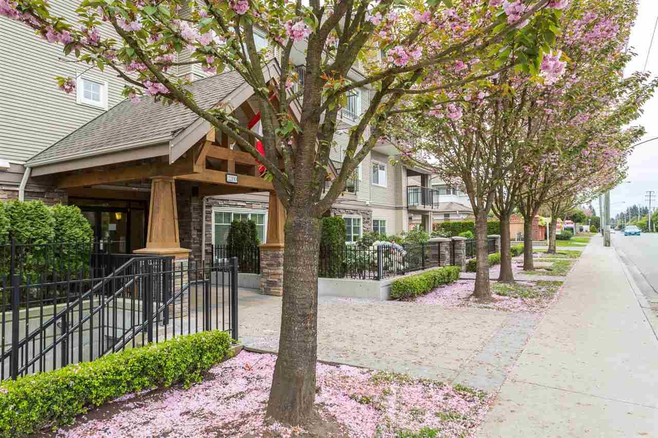 Main Photo: 404 22150 DEWDNEY TRUNK ROAD in : West Central Condo for sale : MLS®# R2058724