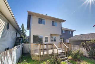 Photo 37: 8 Martinridge Way NE in Calgary: Martindale Detached for sale : MLS®# A1141248