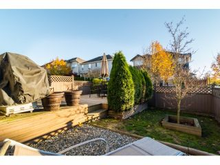 """Photo 20: 18908 70 Avenue in Surrey: Clayton House for sale in """"CLAYTON VILLAGE"""" (Cloverdale)  : MLS®# F1426764"""