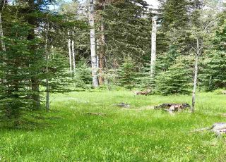 Photo 5: LOT 12 DEAN Road in Lone Butte: Lone Butte/Green Lk/Watch Lk Land for sale (100 Mile House (Zone 10))  : MLS®# R2537444