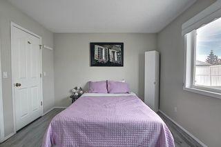 Photo 17: 87 Taravista Street NE in Calgary: Taradale Detached for sale : MLS®# A1084185