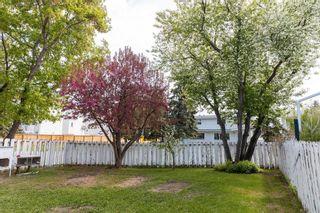 Photo 34: 10503 48 Avenue in Edmonton: Zone 15 House for sale : MLS®# E4246967