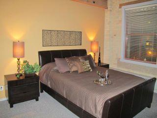 Photo 11: 167 Bannatyne Avenue in WINNIPEG: Central Winnipeg Condominium for sale : MLS®# 1118067