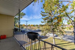 Photo 19: 386 2211 19 Street NE in Calgary: Vista Heights Row/Townhouse for sale : MLS®# A1149478