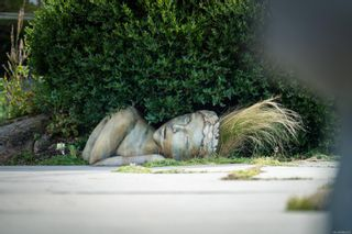 Photo 41: 50 King George Terr in Oak Bay: OB Gonzales House for sale : MLS®# 886619