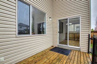 Photo 36: 56 Cranwell Lane SE in Calgary: Cranston Detached for sale : MLS®# A1111617