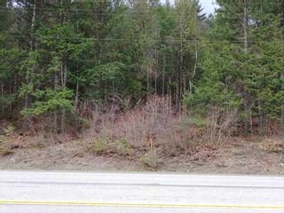 Photo 8: 37535 TRANS CANADA Highway in Boston Bar / Lytton: Hope Laidlaw Land for sale (Hope)  : MLS®# R2443142