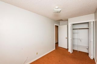 Photo 30: 48 Whitworth Way NE in Calgary: Whitehorn Detached for sale : MLS®# A1147094
