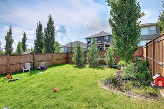 Photo 46: 229 Mountainview Drive: Okotoks Detached for sale : MLS®# A1128364