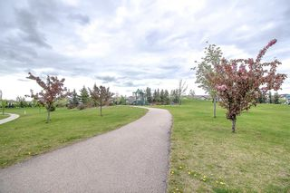 Photo 40: 411 EVERMEADOW Road SW in Calgary: Evergreen Detached for sale : MLS®# A1025224
