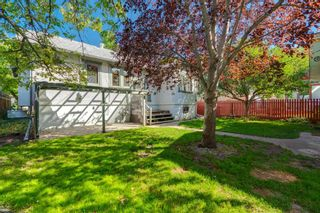 Photo 44: 509 ALEXANDER Crescent NW in Calgary: Rosedale Detached for sale : MLS®# A1091236