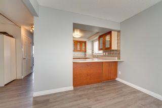 Photo 10: 7337 180 Street in Edmonton: Zone 20 Townhouse for sale : MLS®# E4260363