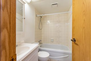 Photo 6:  in Edmonton: Zone 02 Condo for sale : MLS®# E4246424