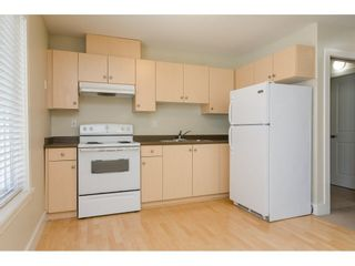 """Photo 18: 6871 196 Street in Surrey: Clayton House for sale in """"Clayton Heights"""" (Cloverdale)  : MLS®# R2287647"""