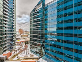 Photo 27: 910 225 11 Avenue SE in Calgary: Beltline Apartment for sale : MLS®# A1068371