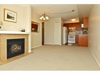 """Photo 6: 301 8880 202ND Street in Langley: Walnut Grove Condo for sale in """"THE RESIDENCES AT VILLAGE SQUARE"""" : MLS®# F1409404"""