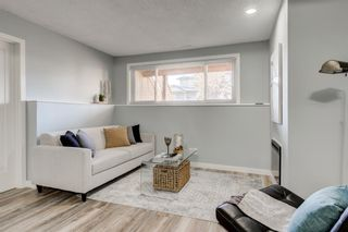 Photo 11: Unit C 130 29 Avenue NW in Calgary: Tuxedo Park Apartment for sale : MLS®# A1078880