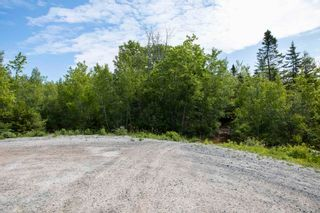 Photo 7: Lots St. Phillips Street in Bridgewater: 405-Lunenburg County Commercial  (South Shore)  : MLS®# 202115971