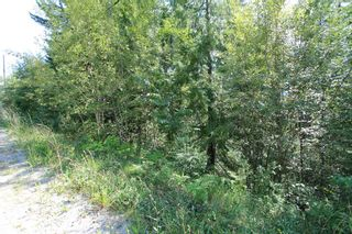 Photo 4: Lot 91 Anglemont Way in Anglemont: Land Only for sale (Shuswap)  : MLS®# 10069930