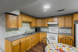 Photo 24: 4011 19 Avenue in Edmonton: Zone 29 House for sale : MLS®# E4248497