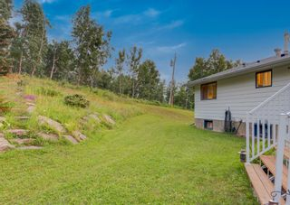 Photo 47: 258040 1240 Drive W: Rural Foothills County Detached for sale : MLS®# A1133554