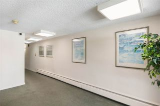 Photo 31: 310 5340 HASTINGS STREET in Burnaby: Capitol Hill BN Condo for sale (Burnaby North)  : MLS®# R2551996