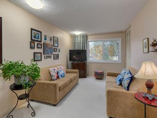 Photo 21: 9804 Palishall Road SW in Calgary: Palliser Detached for sale : MLS®# A1040399