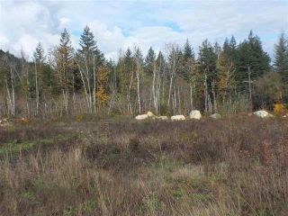 Photo 7: 65457 NORTON Road in Hope: Hope Center Land for sale : MLS®# R2545693