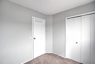 Photo 19: 125 Martin Crossing Way NE in Calgary: Martindale Detached for sale : MLS®# A1117309