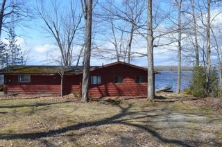 Photo 7: 195 Campbell Beach Road in Kawartha Lakes: Rural Carden House (Bungalow) for sale : MLS®# X4741548