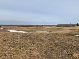 Photo 6: TWP Road 515 Range Road 220: Rural Strathcona County Rural Land/Vacant Lot for sale : MLS®# E4236521