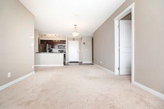 Photo 22: 306 5810 MULLEN Place in Edmonton: Zone 14 Condo for sale : MLS®# E4265382