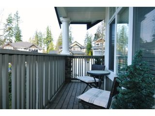 """Photo 19: 10658 244TH Street in Maple Ridge: Albion House for sale in """"MAPLE CREST"""" : MLS®# V1053982"""