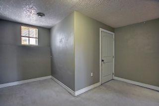 Photo 23: 6907 17 Avenue in Edmonton: Zone 53 House for sale : MLS®# E4259901