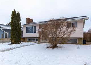 Photo 1: 3807 49 Street NE in Calgary: Whitehorn Detached for sale : MLS®# A1066626