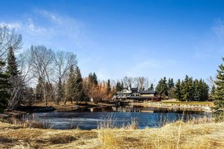 Photo 45: 355 Crystal Green Rise: Okotoks Semi Detached for sale : MLS®# A1091218