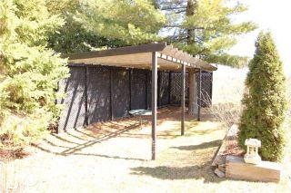Photo 9: 52 Robinson Avenue in Kawartha Lakes: Rural Eldon House (Bungalow) for sale : MLS®# X3472144